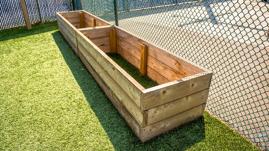 preschool planter